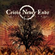 CRISIS NEVER ENDS - review