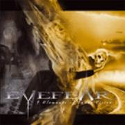EYEFEAR - 9 elements of innervision