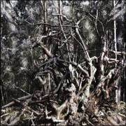 FOLGE DEM WIND - Hail the pagan age