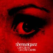 SHENANIGANZ - Open your eyes or cover your head