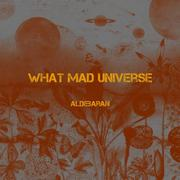 WHAT MAD UNIVERSE - Aldebaran