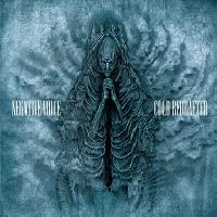 NEGATIVE VOICE - Cold redrafted