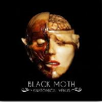 BLACK MOTH - Anatomical venus