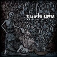 PANCHRYSIA - Dogma