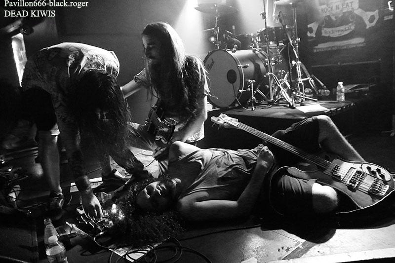 Dead kiwis, dukkha, ramree