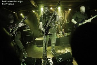 19.07.18_nervecell10