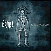 GOJIRA - review