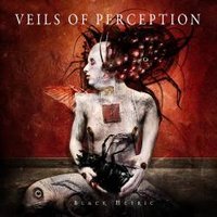 VEILS OF PERCEPTION - review