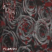 LOST REFLECTION - Florida