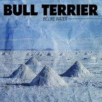 BULL TERRIER - Be Like Water