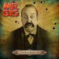 MR BIG - The stories we could tell