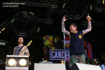 23.06.19_cancerbats03